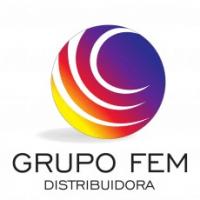 Grupo FEM